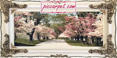 تابلو فرش شکوفه های بهاری با قاب چوبی سفید