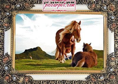 تابلوفرش اسب قهوه ای با قاب شاپرک