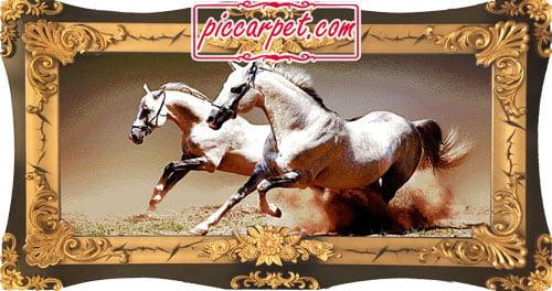 تابلو فرش اسب سفید با قاب شیرنشان